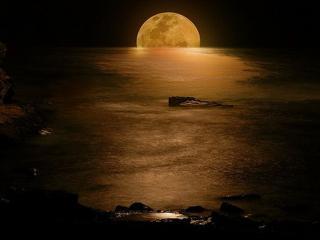 обои Лунная дорожка фото