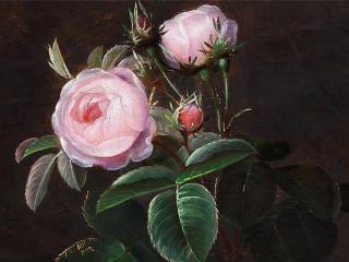 обои Розы художника фото