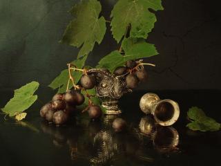 обои Натюрморт - Крупный виноград фото