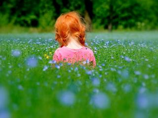 обои Рыжая девчушка в поле фото