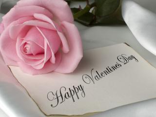 обои День Св. Валентина - Нежная роза и поздравление фото