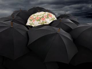 обои Дождливое небо и зонтики фото