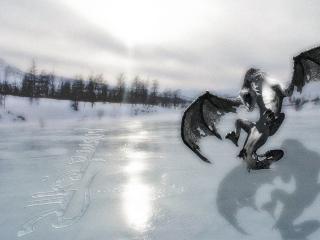 обои Дракон фото
