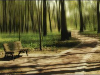 обои Весенняя прогулка в сквере фото