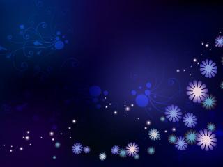 обои Цветы,   звезды,   вечер фото