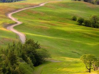 обои Дорога в зеленых холмах,   солнечный день фото
