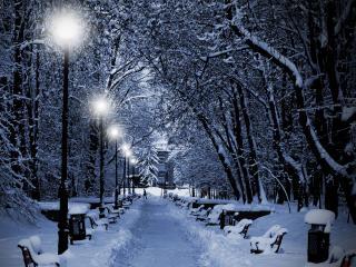 обои Зимняя аллея,   фонари,   вечер,   силуэт фото