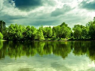 обои Пруд в летнем парке,   день,   зеленые деревья у берега фото
