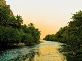 обои Река в зарослях,   тропики,   закат фото