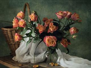 обои Розы и корзина фото
