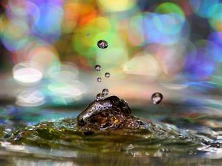 обои Всплеск воды и радужные блики фото
