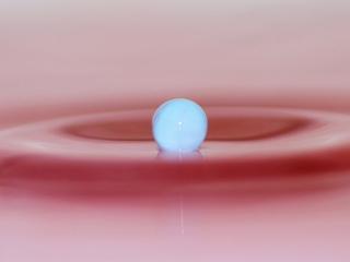 обои Голубой шар на розовой жидкости фото