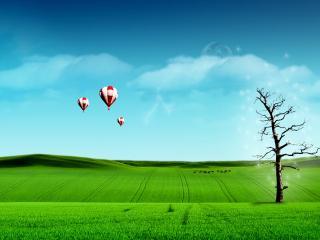 обои Зеленый луг,   деревце,   воздушные шары фото