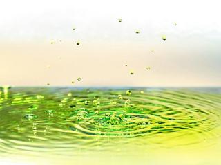 обои Цветастые брызги воды фото