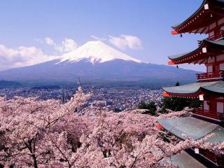 обои Цветущая сакура и многоэтажный Японский дом фото
