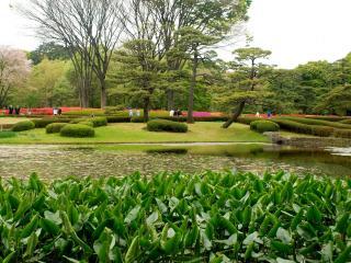 обои Японский парк с водоемом фото