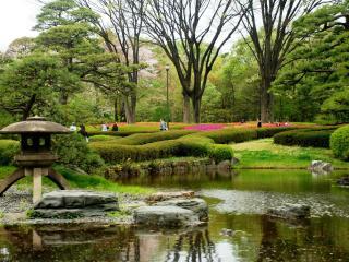 обои Весенний Японский парк фото