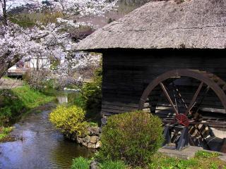 обои Водяная мельница в горной Японии фото