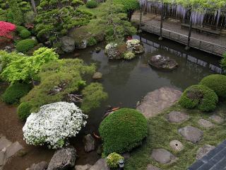 обои Декоративный бассейн с рыбками фото