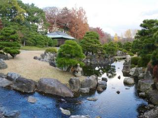 обои Красивые деревья у реки с камнями фото