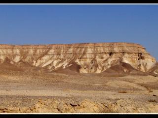 обои Красоты пустыни фото