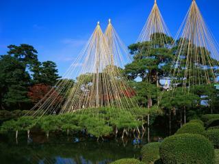 обои В японском парке фото