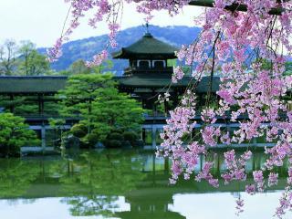 обои Красивые интерьеры в Японии фото