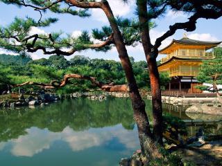 обои Красивый японский пейзаж у дома фото