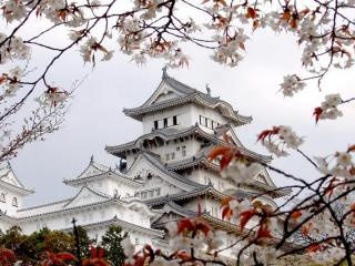 обои Красивый японский дом фото
