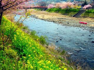 обои Весенний ручей, в небольшом городке Японии фото
