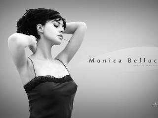 обои Моника беллучи с заколкой во рту фото