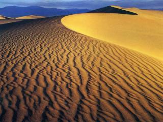обои Барханы пустыни фото
