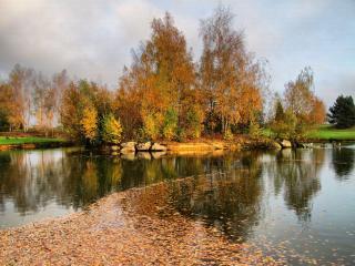 обои Осенними тропами фото