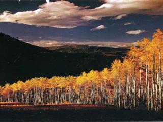 обои Осенний пейзаж в горах фото