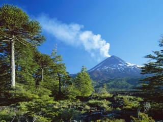 обои Дымящий вулкан  весной фото