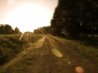 обои Проселочная дорога в лучах солнца фото