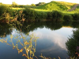 обои Летней порой у пруда фото