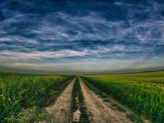 обои Полевая дорога и темное небо фото