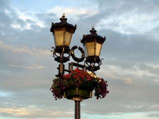 обои Двойной фонарь с цветами фото
