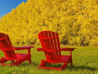 обои Два красных кресла на фоне желтых деревьев фото