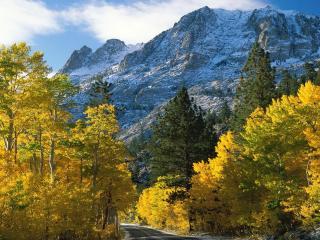 обои Осенний пейзаж горной дороги фото