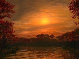 обои Осенние деревья вокруг пруда фото