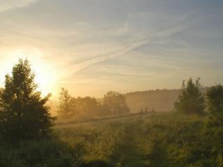 обои Летнее туманное утро фото