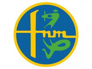 обои Логотип FNM фото
