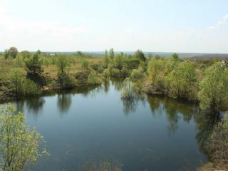 обои Весна, деревенский пруд фото