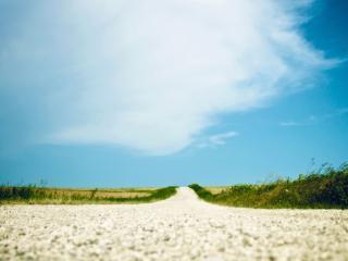 обои Белая дорога в поле фото