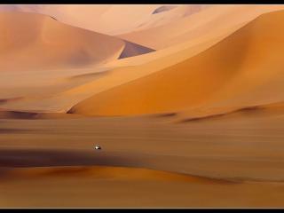 обои Теплый цвет Сахары фото