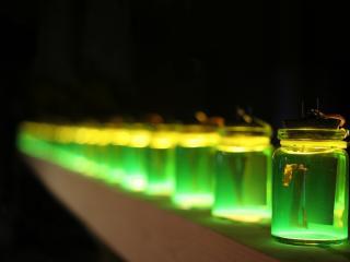 обои Банки с зеленой жидкостью фото