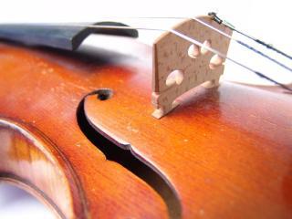 обои Натянутые струны старой скрипки фото