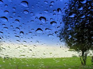 обои Сквозь стекло в дождливую погоду фото